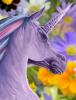pretty_unicorn.png